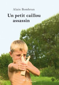 Un petit caillou assassin